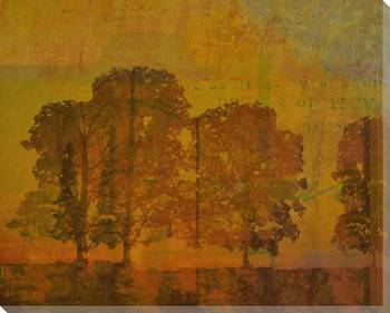 Shadow of Trees Two Wrapped Canvas Giclee Print Wall Art