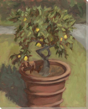 Lemon Tree at Villa Oliva Wrapped Canvas Giclee Print Wall Art