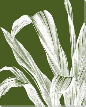 Botanical Etching IX Wrapped Canvas Giclee Print Wall Art