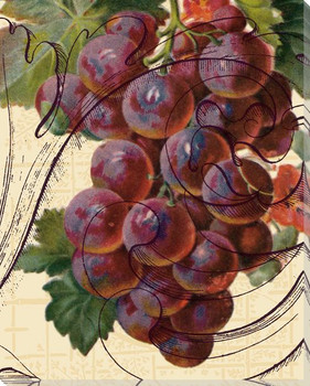 Scolled Grapes Wrapped Canvas Giclee Print Wall Art