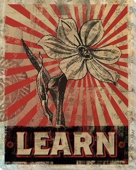 """""""Learn"""" with Flower Wrapped Canvas Giclee Print Wall Art"""
