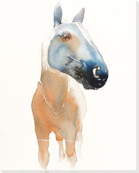 Gaze Horse Wrapped Canvas Giclee Print Wall Art