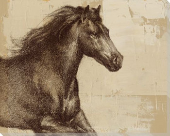 Majestic Horse 1 Wrapped Canvas Giclee Print Wall Art