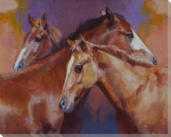 Pals Three Horses Wrapped Canvas Giclee Print Wall Art