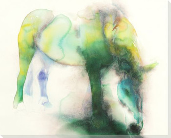Green Graze Horse Wrapped Canvas Giclee Print Wall Art