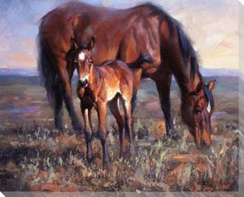 The Bay Filly Horse Wrapped Canvas Giclee Print Wall Art