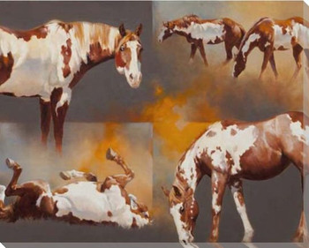 Coats of Paint Horses Wrapped Canvas Giclee Print Wall Art