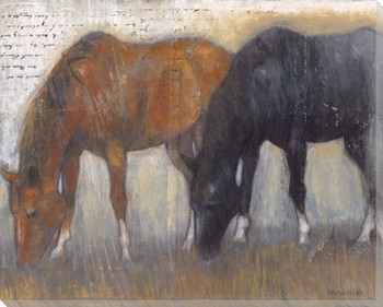 Copper and Onyx Two Horses Grazing Wrapped Canvas Giclee Print