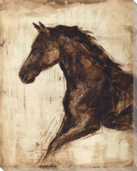 Weathered Equestrian Horse I Wrapped Canvas Giclee Print Wall Art