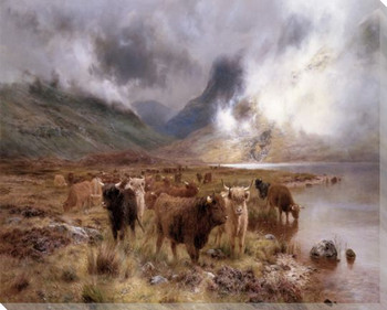 Through Glencoe Bulls Wrapped Canvas Giclee Print Wall Art