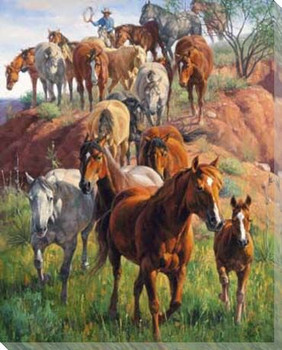 Ladies First Herding Horses Wrapped Canvas Giclee Print Wall Art