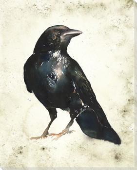 Russel Bird Wrapped Canvas Giclee Print Wall Art