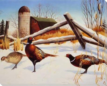 Pheasants II Wrapped Canvas Giclee Print Wall Art