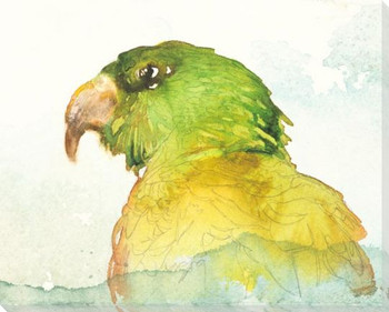 Macaw Bird Wrapped Canvas Giclee Art Print Wall Art