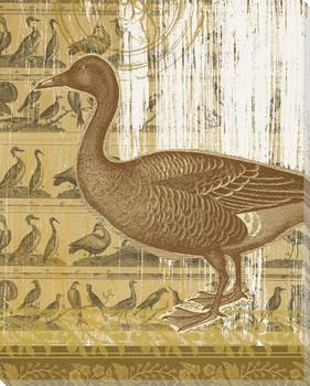 First Duck Bird Wrapped Canvas Giclee Print Wall Art