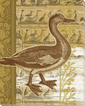 Third Duck Bird Wrapped Canvas Giclee Print Wall Art
