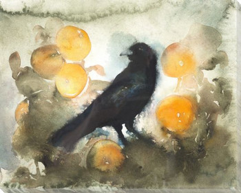 Orange Crow Bird Wrapped Canvas Giclee Print Wall Art