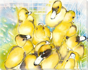 Les Quacks Ducks Wrapped Canvas Giclee Print Wall Art