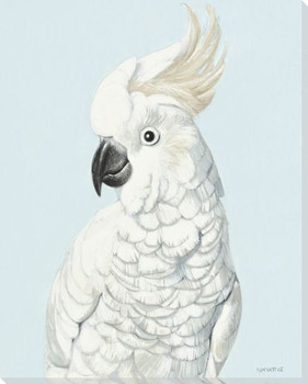 Cockatoo Bird Pose Wrapped Canvas Giclee Print Wall Art