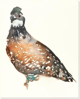 Bob White Bird Wrapped Canvas Giclee Art Print Wall Art