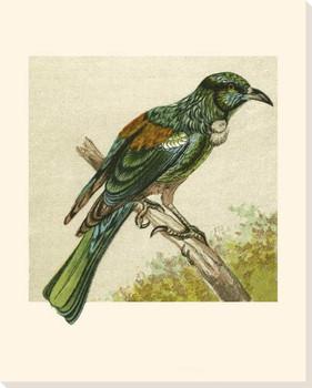 Mini Vintage Birds V Wrapped Canvas Giclee Print Wall Art