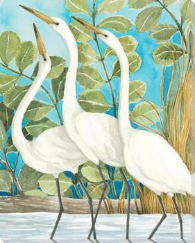 Coastal Encounter Birds II Wrapped Canvas Giclee Print Wall Art