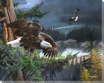 Wings of Freedom Eagle Bird Wrapped Canvas Giclee Print Wall Art