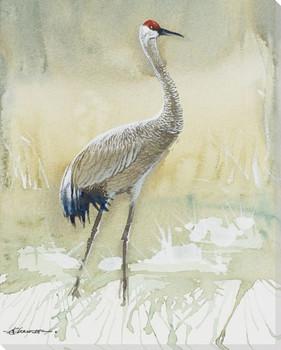 Sandhill Crane Bird Standing Wrapped Canvas Giclee Print Wall Art