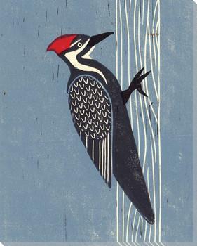 Woodpecker Bird Wrapped Canvas Giclee Print Wall Art