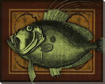 Island Fish II Wrapped Canvas Giclee Print Wall Art