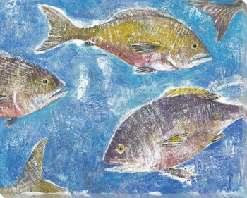 Fresh Catch Fish I Wrapped Canvas Giclee Print Wall Art