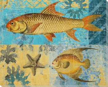 Caribbean Cove Fish 3 Wrapped Canvas Giclee Print Wall Art