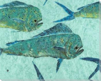 Mint Run Mahi Mahi Fish Wrapped Canvas Giclee Print Wall Art