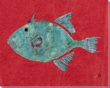 Green Sail Grey Triggerfish Wrapped Canvas Giclee Print Wall Art