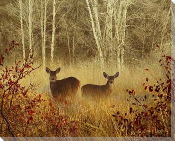 Foggy Deer Wrapped Canvas Giclee Print Wall Art