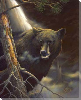 Bear Portrait Wrapped Canvas Giclee Print Wall Art