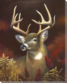 Deer Portrait Wrapped Canvas Giclee Print Wall Art
