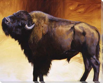 Big Itch Buffalo Wrapped Canvas Giclee Print Wall Art