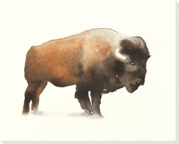 Plains Bison Wrapped Canvas Giclee Art Print Wall Art