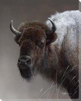 American Icon Buffalo Wrapped Canvas Giclee Print Wall Art