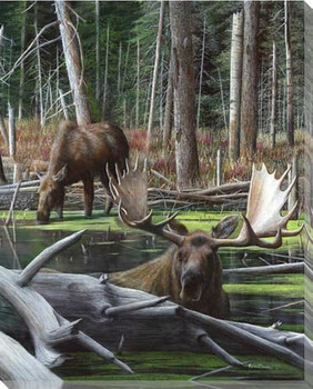 At Rivers Edge Moose I Wrapped Canvas Giclee Print Wall Art