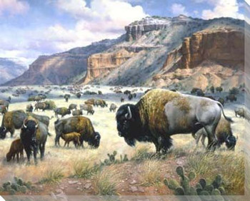 Goodnight's Legacy Buffalo Roaming Wrapped Canvas Giclee Print
