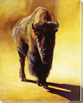 Matriarch Buffalo Walking Wrapped Canvas Giclee Print Wall Art