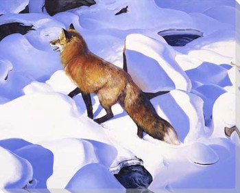 Fire and Ice Fox in the Snow Wrapped Canvas Giclee Print Wall Art
