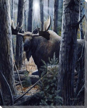 King of the Northwoods Moose Wrapped Canvas Giclee Print Wall Art