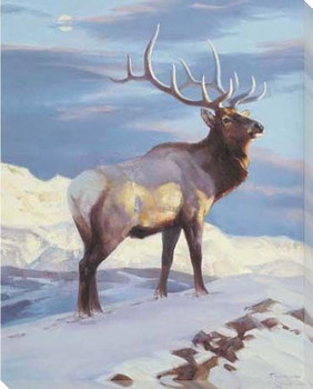 Royal Morning Elk in the Snow Wrapped Canvas Giclee Print Wall Art