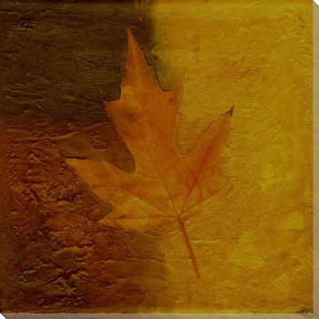 Autumn Leaves One Wrapped Canvas Giclee Print Wall Art
