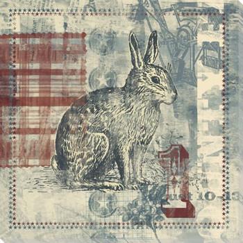 County Fair Rabbit Wrapped Canvas Giclee Print Wall Art