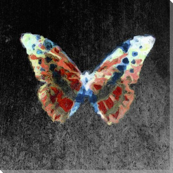 Colored Butterfly 1 Wrapped Canvas Giclee Print Wall Art