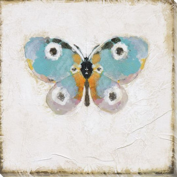 Antique Butterfly II Wrapped Canvas Giclee Print Wall Art
